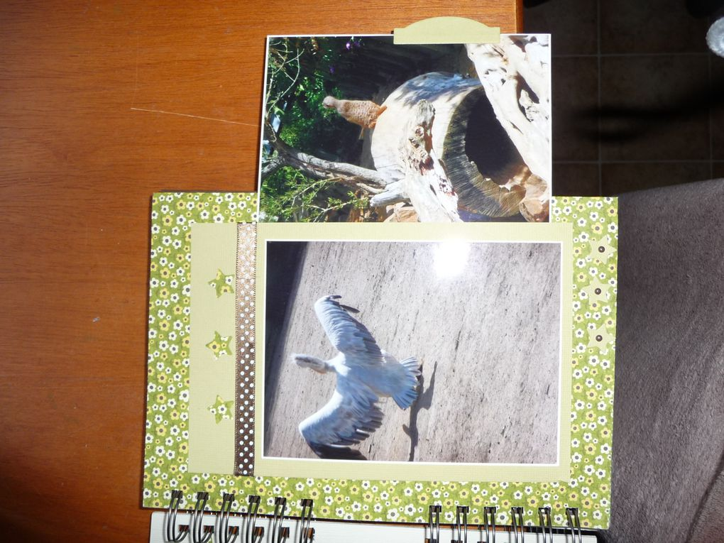 Album - album-zoo-des-sables
