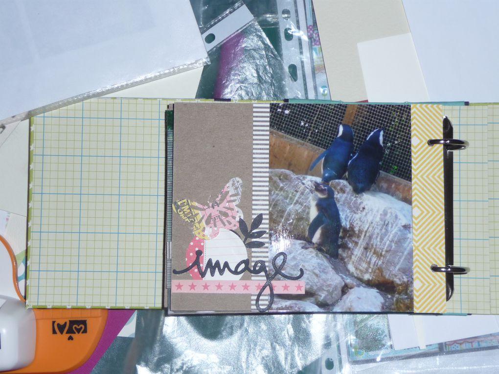 Album - zoom-sur