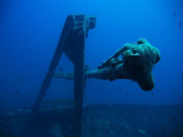 Album - marine-park-2012