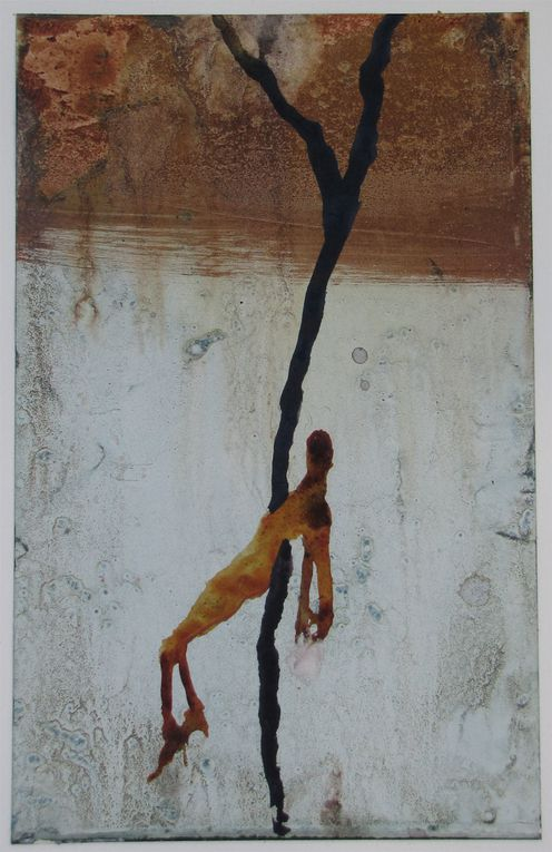 "Expo au Cael ""Terre ici et ailleurs ""Mars 2012"