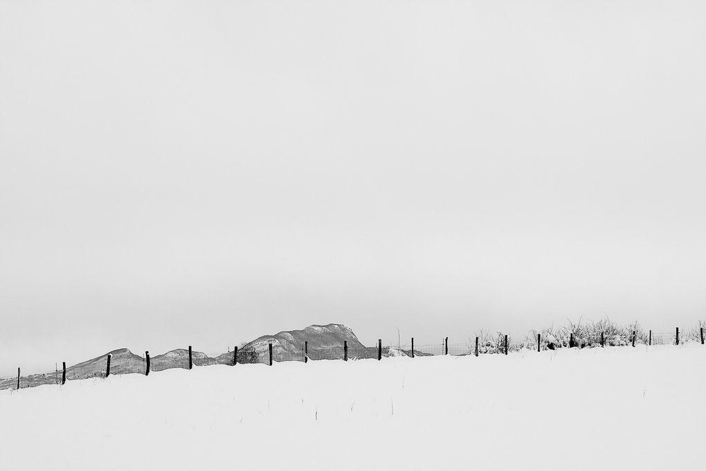 Album - Noir-et-Blanc