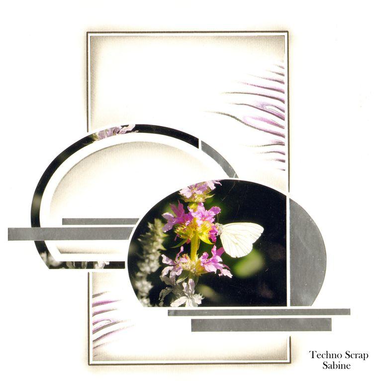 Album - Gabarit-Igloo