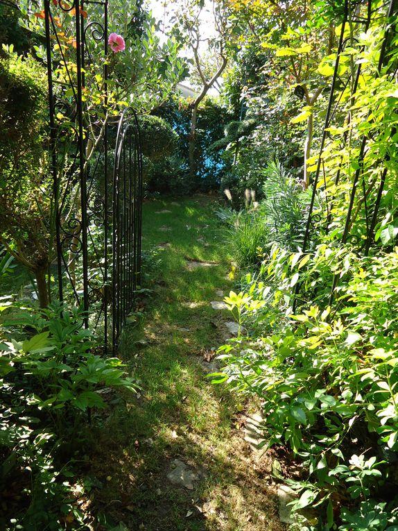 en septembre le fénéant peut aller se pendre..mois derentrée mois de soucis mois de labeur ,septembre nous fait souvent oublier qu'il est un des plus beaux de l'année au jardin...avec une palette de magnifiques couleurs !