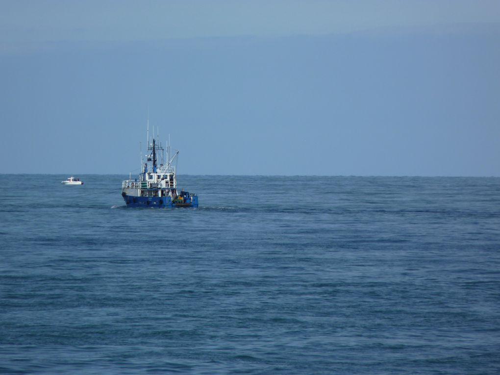 Dans cet album, un chalutier tractant un bateau de recherche océanographique ... et autres bateaux ...