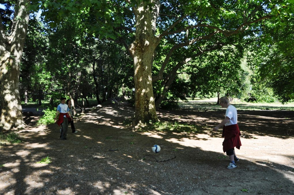 AM Sports- Parc de Vaugrenier