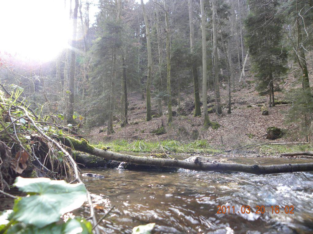 Une belle balade et une station de pompage des eaux de sources forestières.