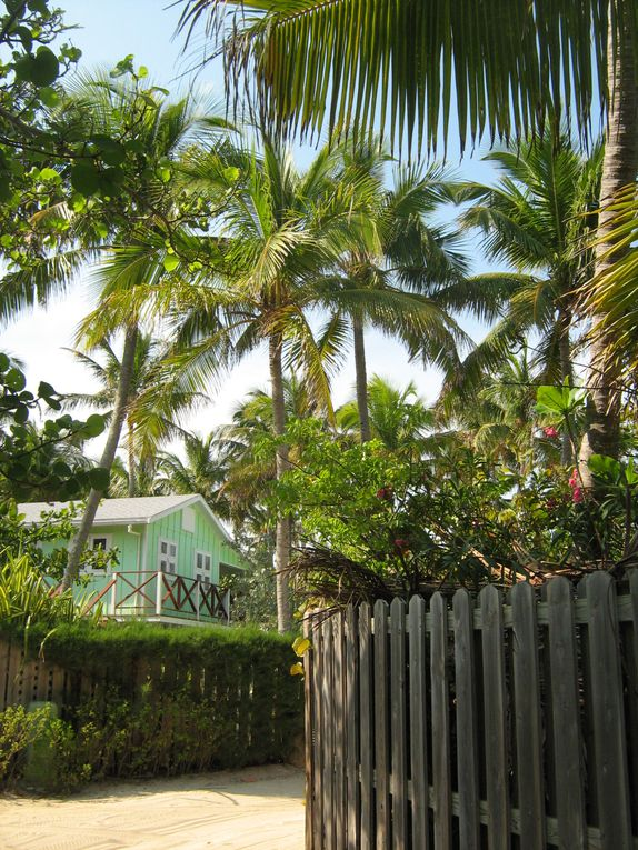 Album - Bahamas