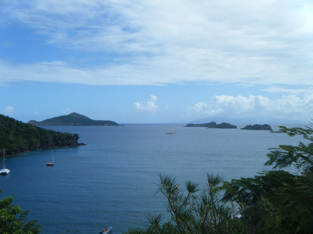 Album - Les-Saintes