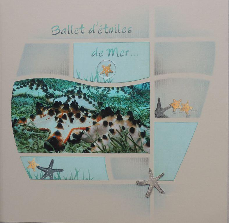 Album - Destination-de-rêve--.été 2011