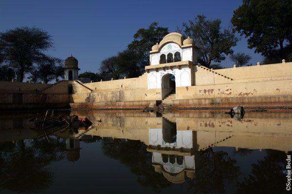 Escapade au Rajasthan, Delhi, Varanasi, Bodhgaya, Amritsar &#x3B; mars 2011.