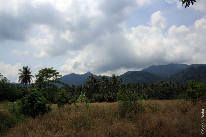 Thailande 02.2012