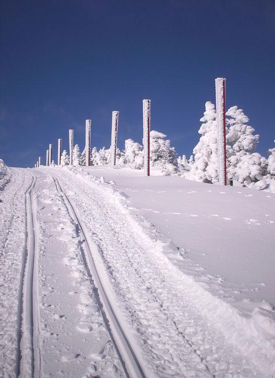 Album - Le Ventoux sous la neige. Photos de Hubert, Bernard et...ma pomme.
