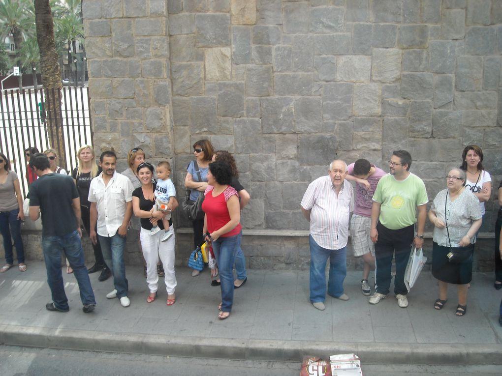 COLEGIO PÚBLICO FERRÁNDEZ CRUZ-ELCHE