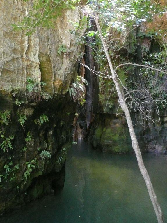 Le parc national de l'Isalo, à Ranohira, est un massif montagneux de grès jurassique, s'étendant sur près de cent kilomètres dans le sens nord sud, et entaillé de profonds canyons et hérissé de pics ...
