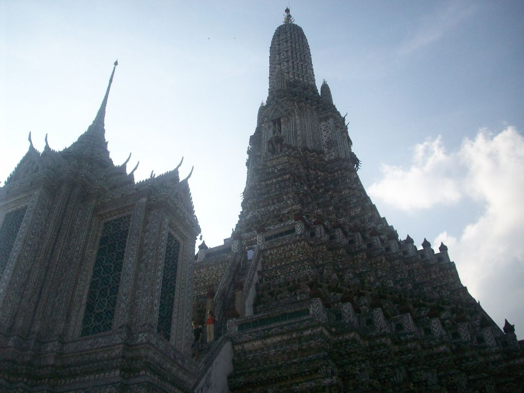 Album - ka-Safari-en-Asie-de-Khao-Yai-a-Bangkok