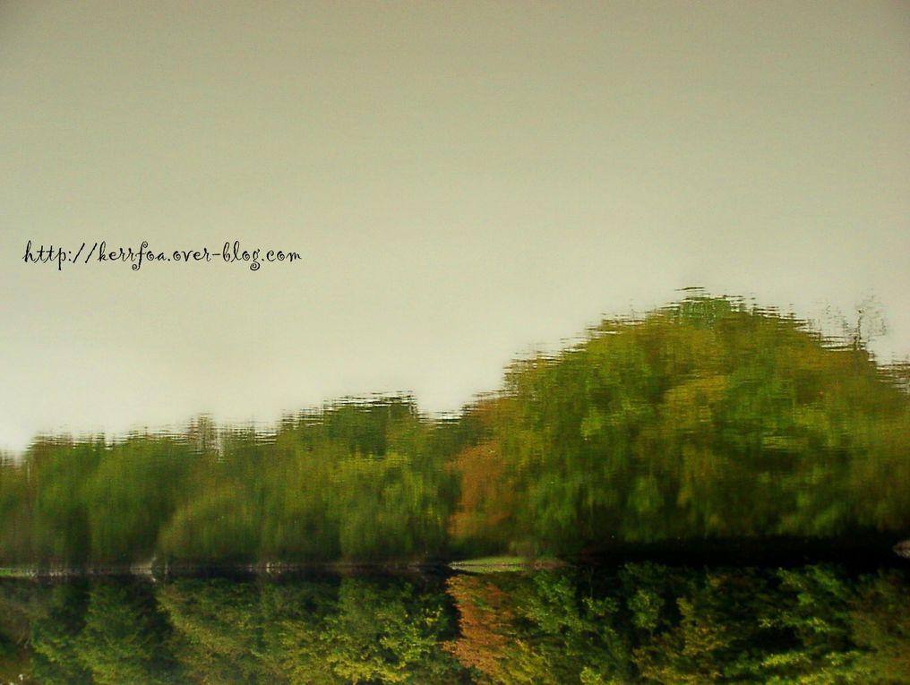 Album - Fotos terre