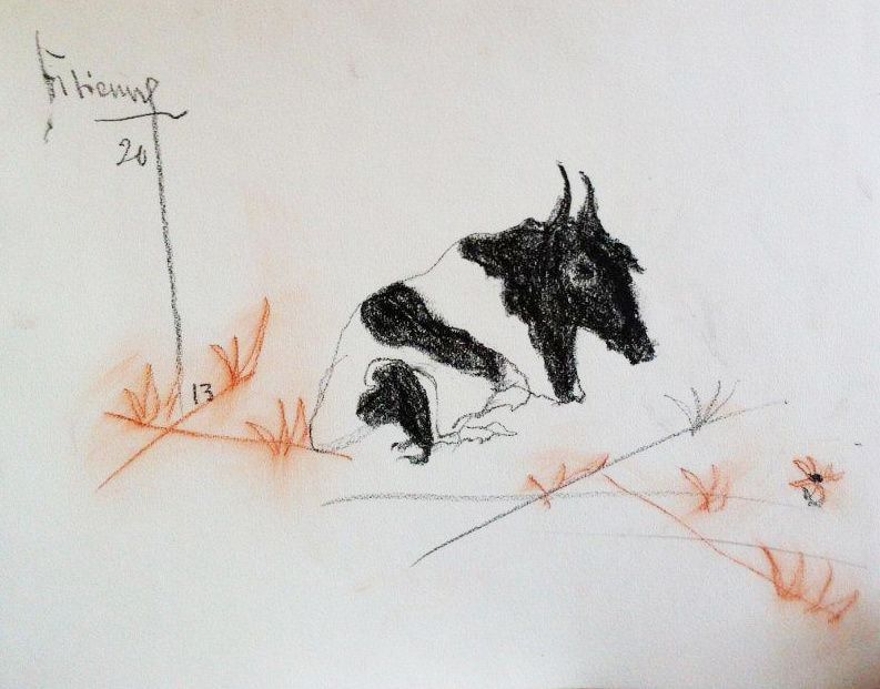 Album - H- Escapades graphiques