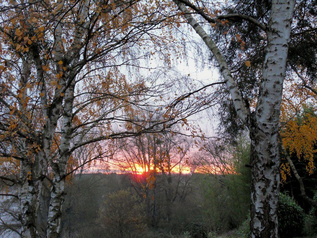 Album 1c - Nature et paysages 2010