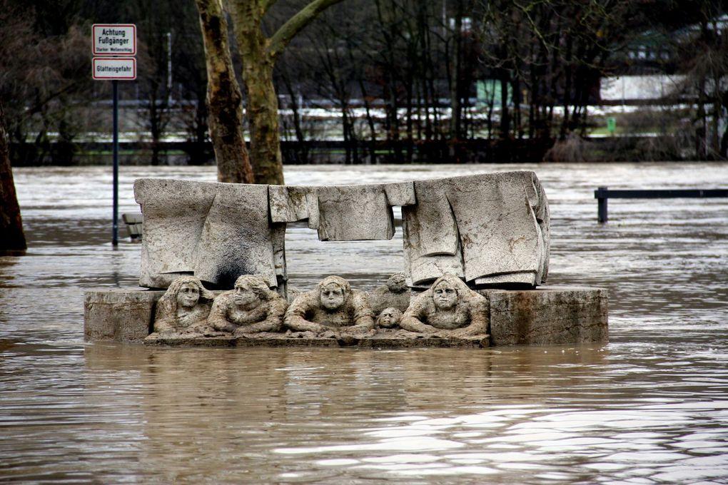 Album - Hochwasser in Veitshöchheim