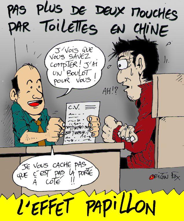 Album - ouate-zi-phoque--