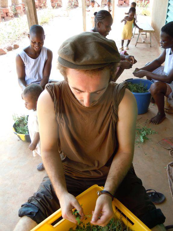 Album - 14. Bobo-Reo--Burkina-