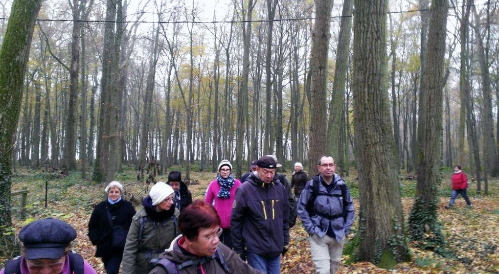 Petite marche de 8 kms6°C temps gris et humide42 marcheurs