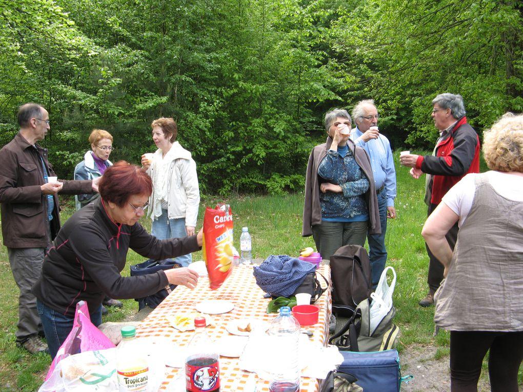 très agréable marche au coeur de la forêt d'Ermenonville.Nous avons fait 8 kms.et nous étions 32 marcheurs.le temps était ensoleillé.