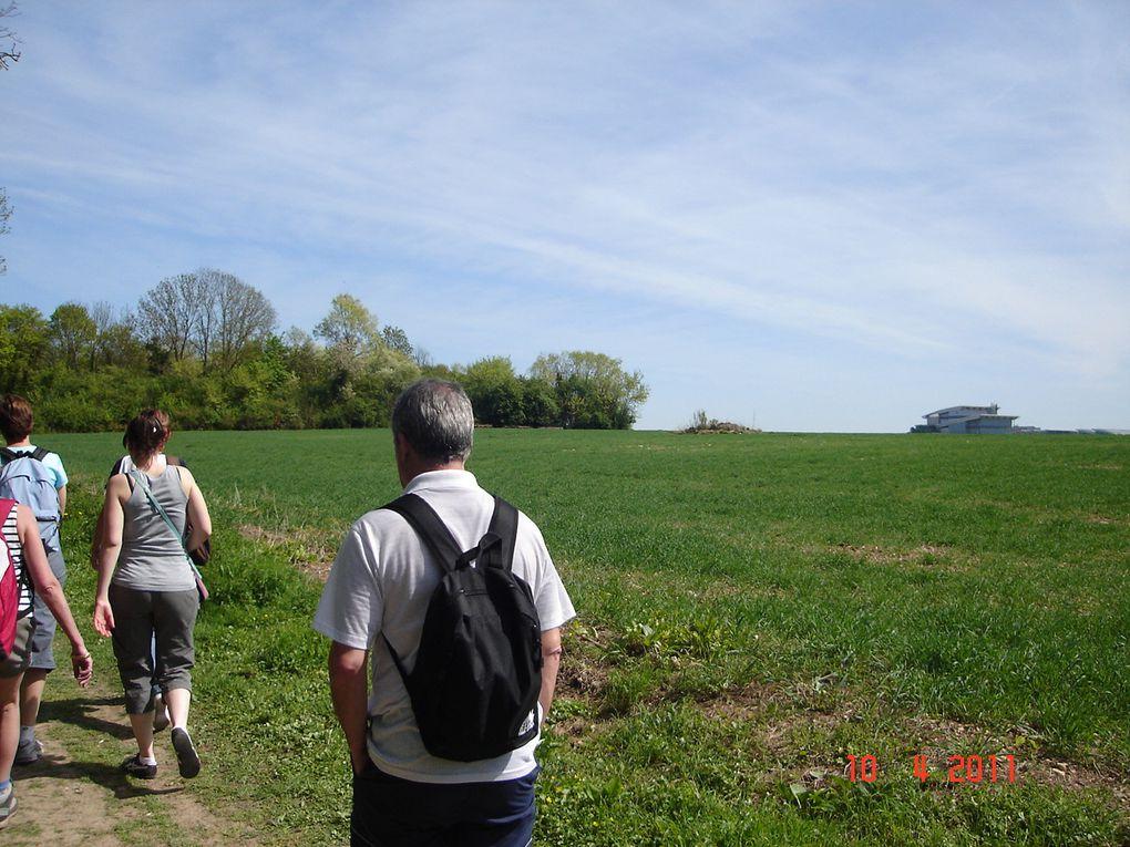 Superbe randonnée que celle ds 3 châteaux!!!!!il a fait beau et chaud, nous étions 25 et nous avons fait 14 kms!!!