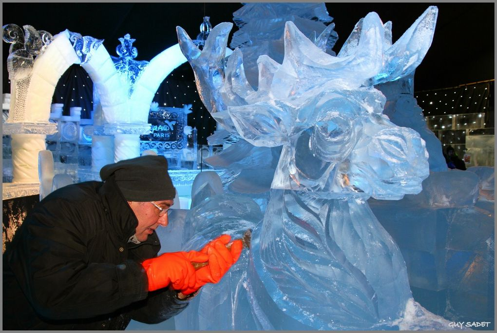 Album - Sculptures sur glace Bruges 2011