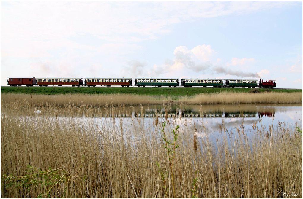 Quatre ans après la dernière en date, cette neuvième fête de la vapeur, une des plus grandes manifestations ferroviaires d'Europe, était très attendue des passionnés de réseau ferré et de vieilles machines, mais aussi du grand public.