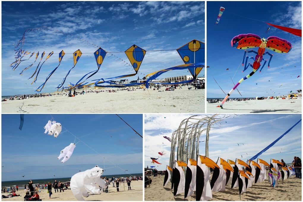 Cette année les organisateurs ont décidé de jouer sur le thème de la mer en transformant le cadre naturel du festival en un aquarium géant. 20 000 liens dans les airs est le fil conducteur retenu pour ce cru 2013.