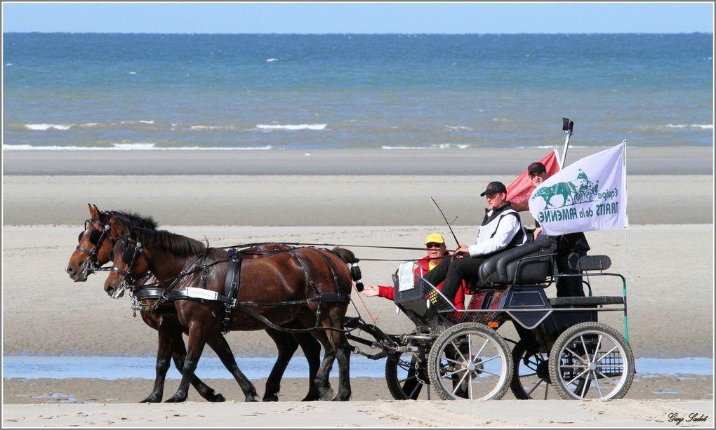 Les attelages ont pris le départ de la course de Boulogne-sur-Mer et se sont relayés durant 24 heures pour rejoindre Compiègne, où l'arrivée fut jugée devant le palais impérial.Des épreuves étaient organisées dans plusieurs villes : mara