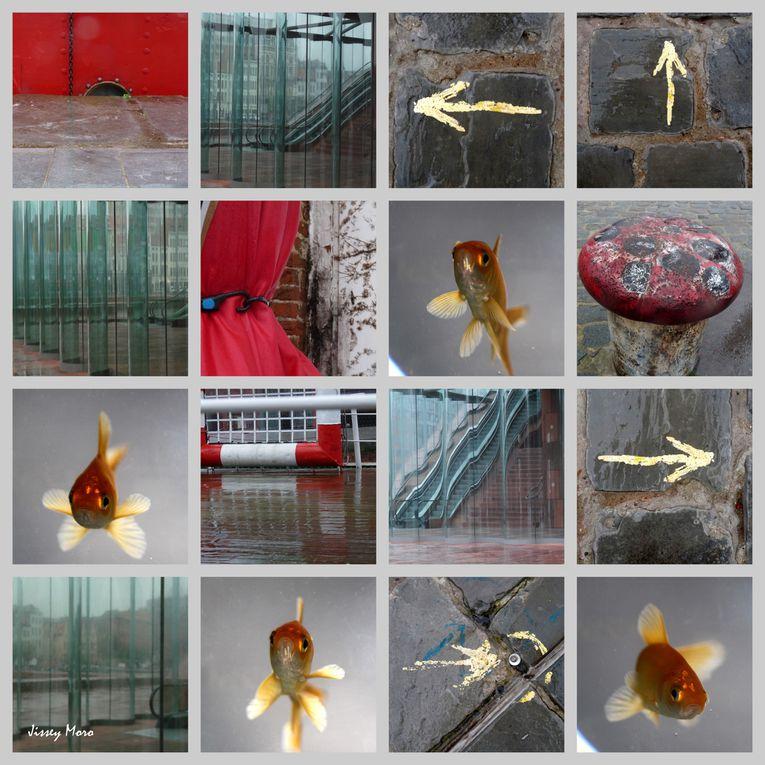 Album - Belgium traveling 2010-2011