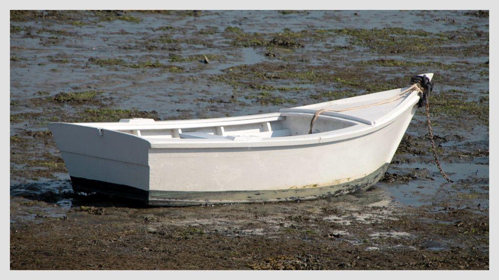 Album - les-barques-silencieuses