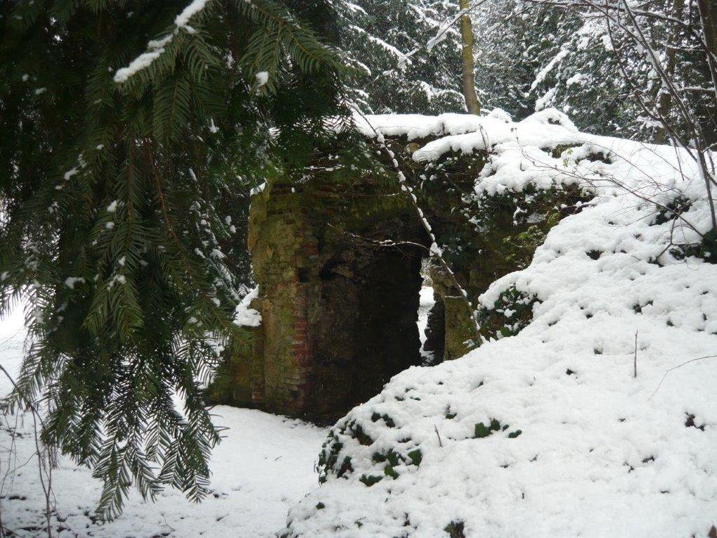 Album - parco-d-inverno