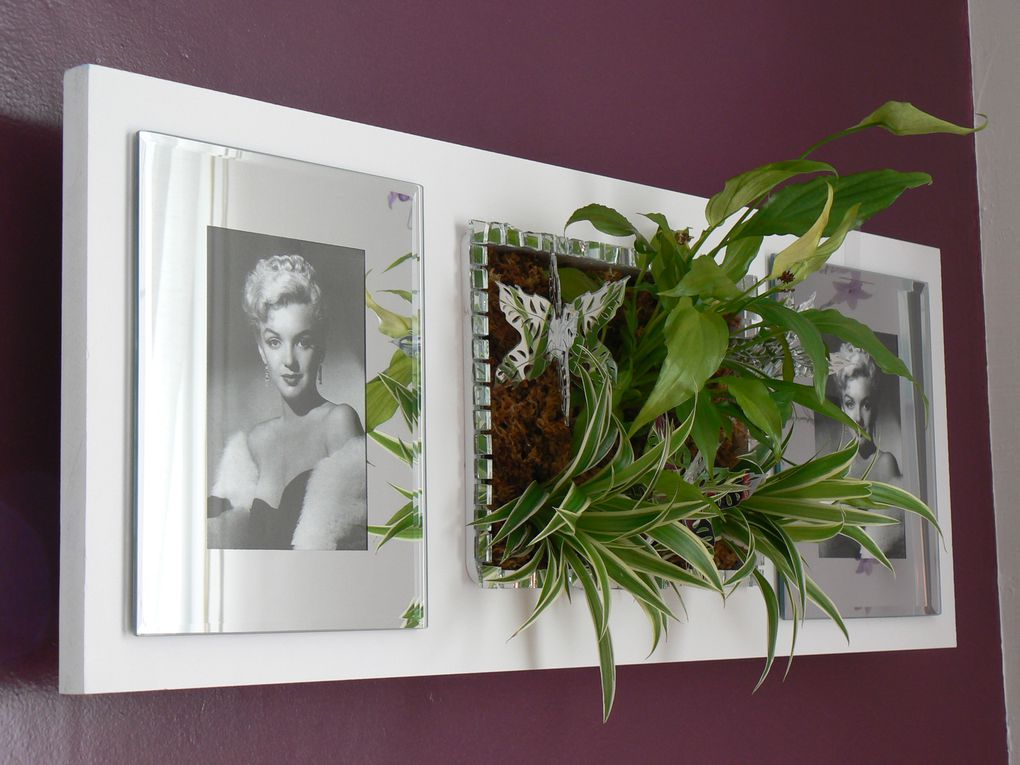 Album - TABLEAU &amp&#x3B; TUBE VEGETAL