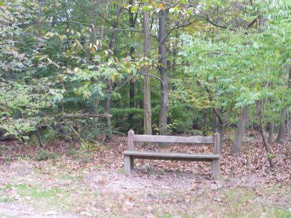 Un parfum d'automne en cette belle après midi de fin d'octobre 2010