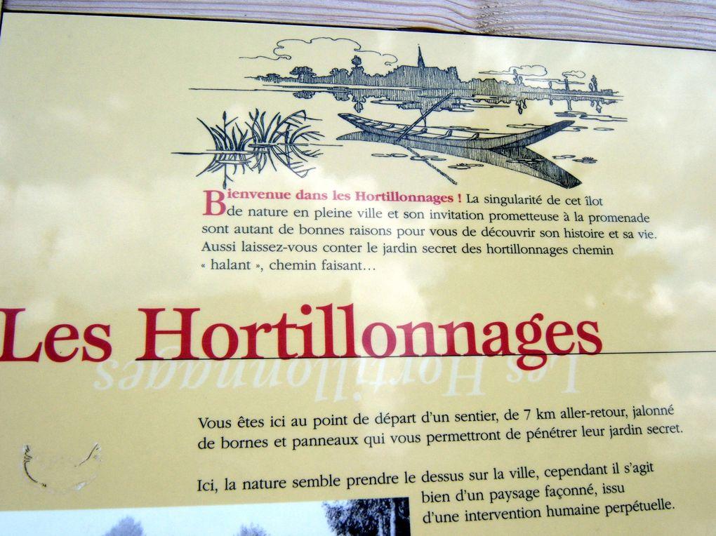 80 - Somme - AMIENS  Album diaporama des hortillonnages