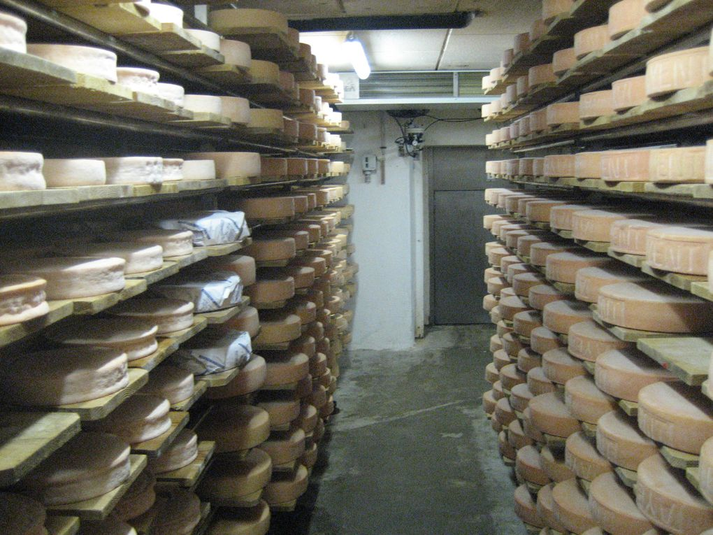 Album - Fromagerie