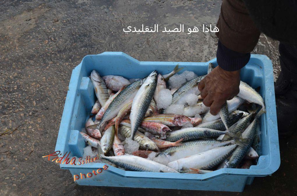الصيد التقليدي بالصخيرة و بالتحديد واد بوسعيد, الناظور' ميناء الصخيرة, الزبوزة و الفريشاتphotos : ridha sellamihttp://www.flickr.com/photos/ridha-sellami/sets/7215763879863