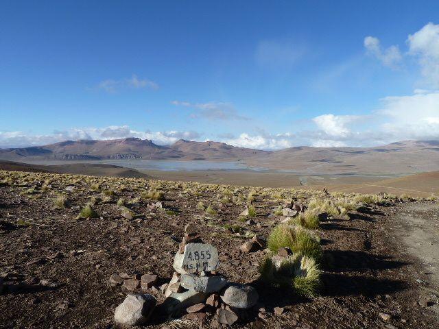 De San Pedro de Atacama a Tupiza, le sud Lipez (lagunes, désert de Dali, vizcacha...)