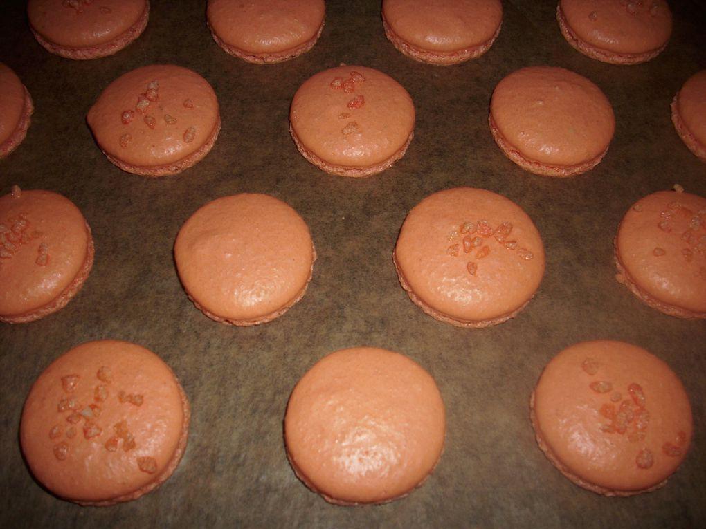 Vous trouverez ici toutes les photos de mes petits macarons si croquants à l'extérieur et si fondant à l'intérieur....Faites vous plaisir!!!!