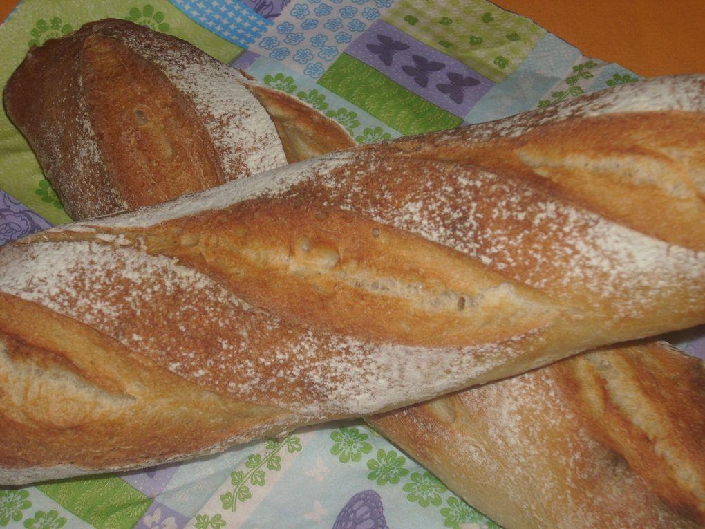 Pour ceux et celles qui aiment le pain, les viennoiseries, vous trouverez ici de quoi vous mettre l'eau à la bouche!