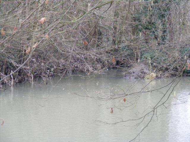 Le ru du Mesnil, de sa source à son embouchure.