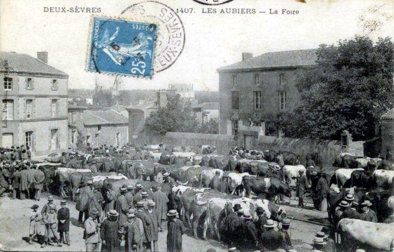 Album - CPA-Foires-et-marches