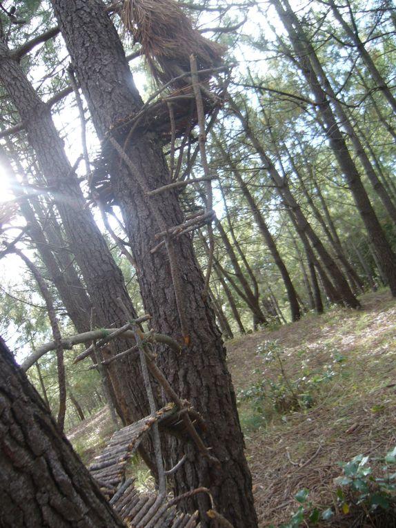 construction d'un village éphémère dans le bois des Eloux