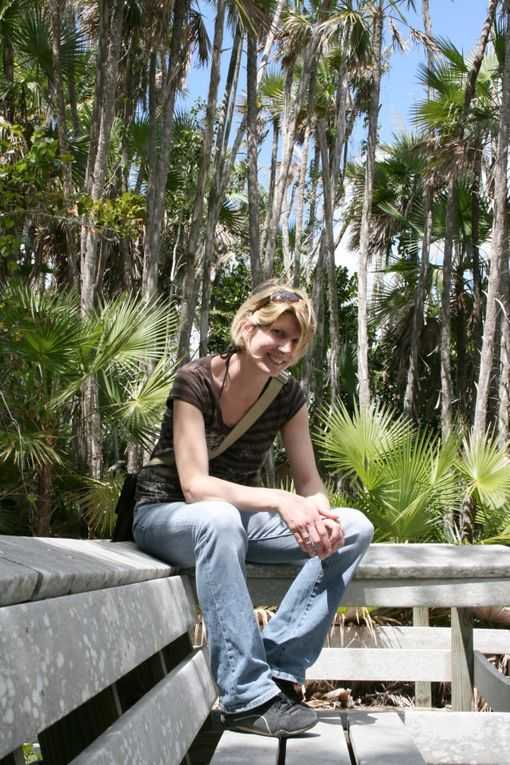 Album - 2008 - Floride