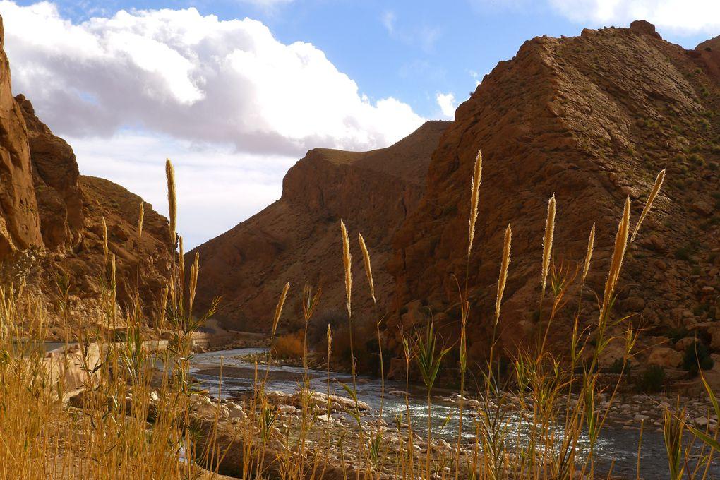 deserts et vallées, paix, amour & tranquilitée