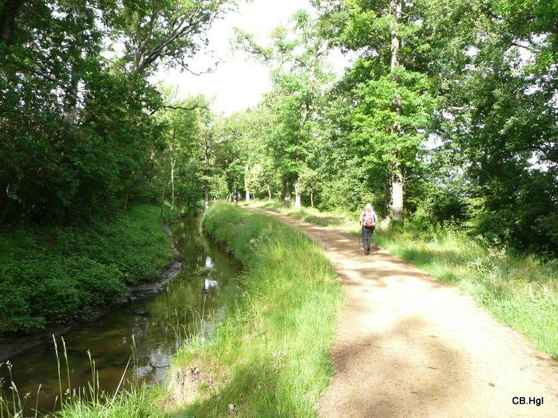 Notre chemin de Arles (13) jusqu'à Lescar près de Pau (64)