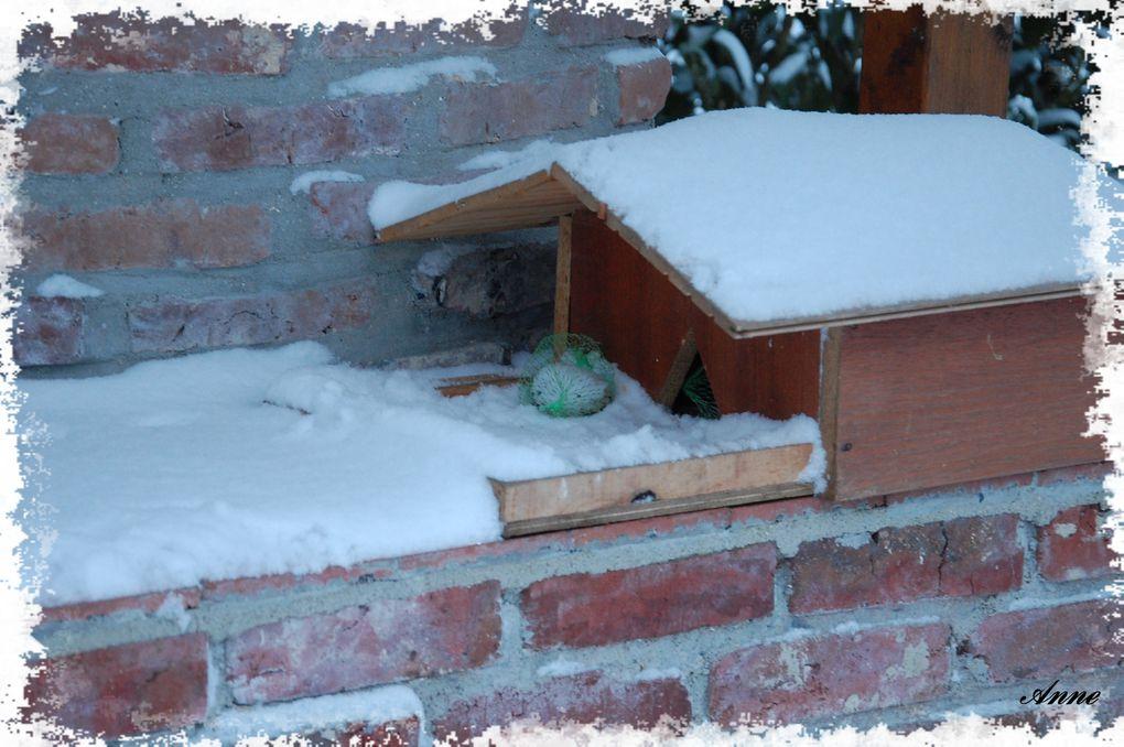 Toutes les photos d'hivers